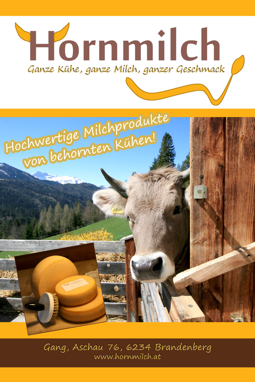 Hornmilch, Kühe, Kühe mit Hörnern, Gang, Brandenberg, Käse, Milch
