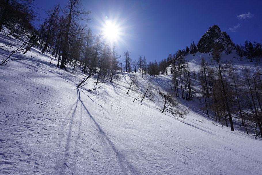 berghundtal, skitour,berg hund tal, wandern mit hund, skitour mit hund