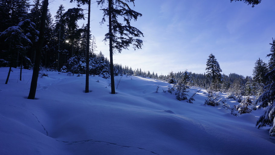 berghundtal, kasberg, alpen,salzkammergut,skitour,sonnenuntergang,oberösterreich,steineck