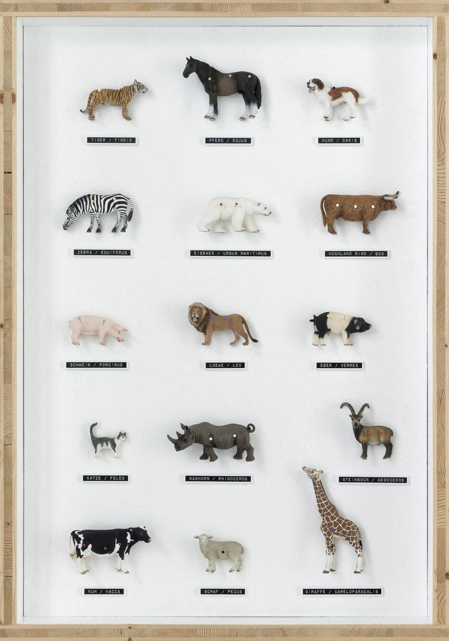 STONEMAN Schaukasten: Natur 2010 / 15 Plastiktiere mit Stecknadel. Holz Glas B 70 H 100 T 10 cm