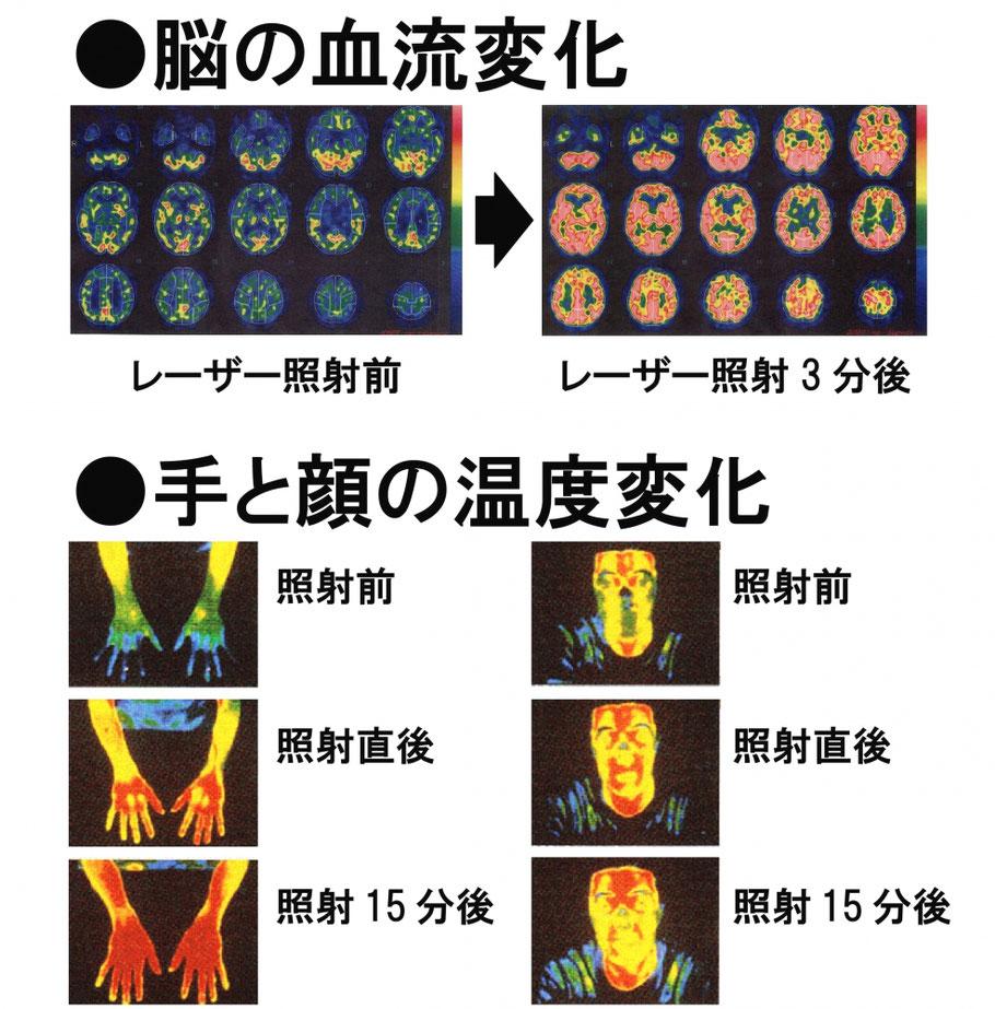 東京医研ホームページより参照
