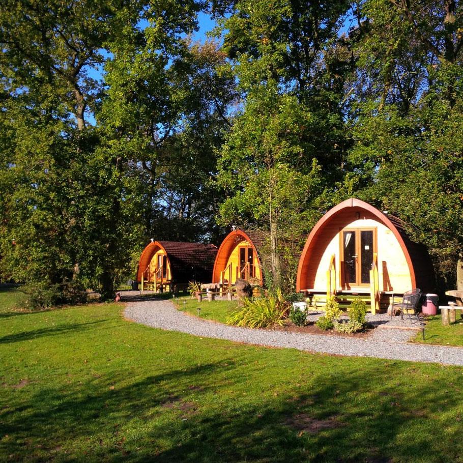 Mobil Home En Bois Au Design Moderne