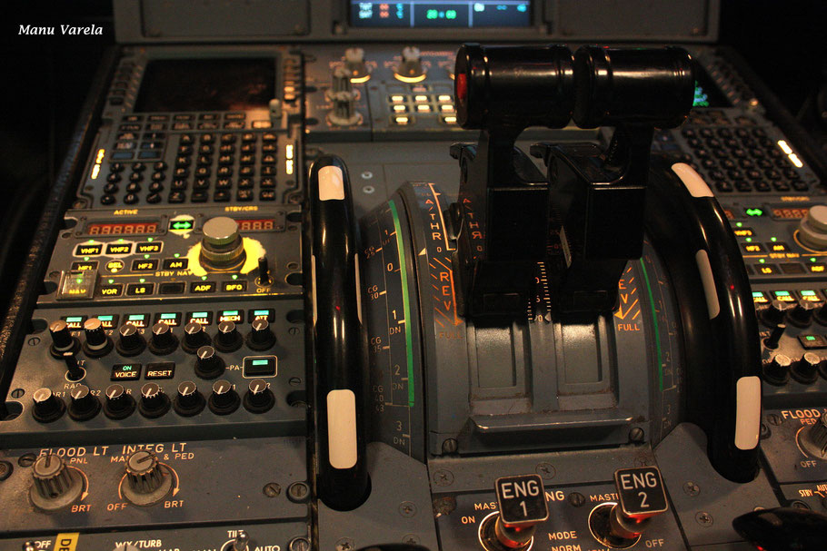 Throttle A320 Vueling
