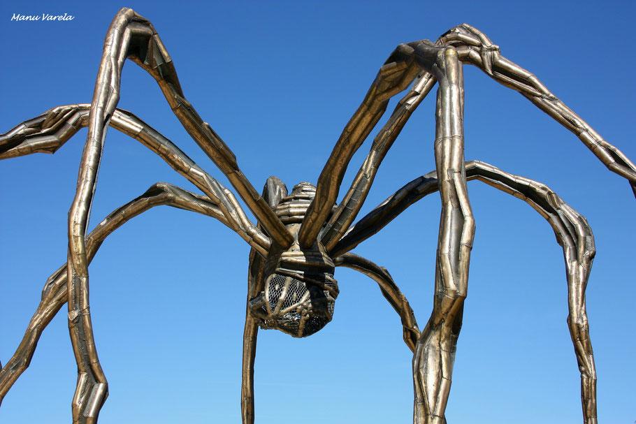 Entorno museo Guggenheim