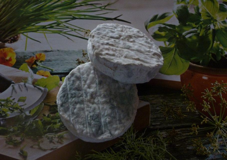 Le péroton - fromage de chèvre de La Pérotonnerie de Rom dans les Deux-Sèvres