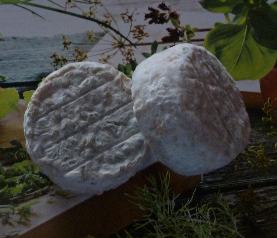 Le tourom - fromage de chèvre de La Pérotonnerie de Rom dans les Deux-Sèvres
