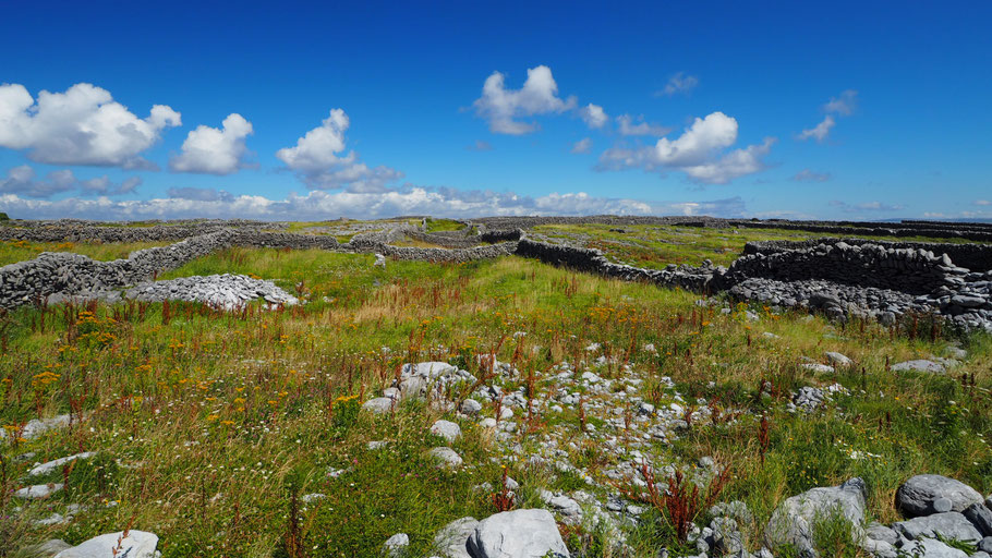 Inisheer Island. Photo by RK.