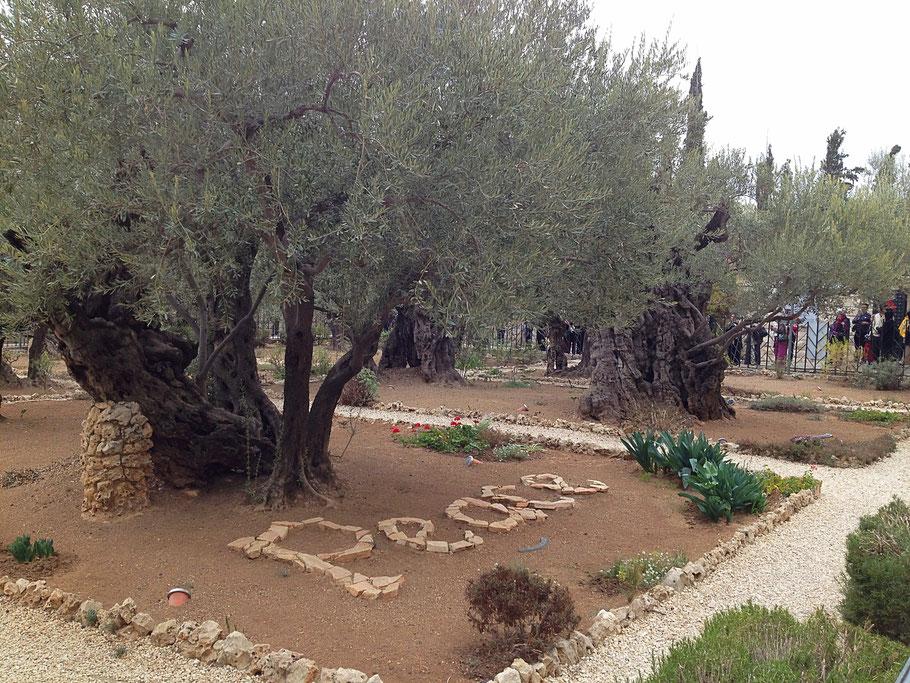 Израиль - Покой