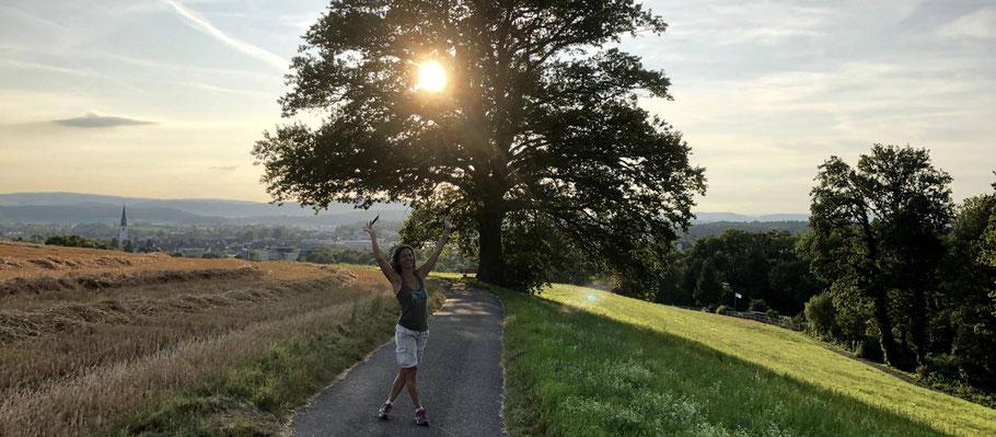 Eiche oberhalb Bülach, Juli 2019