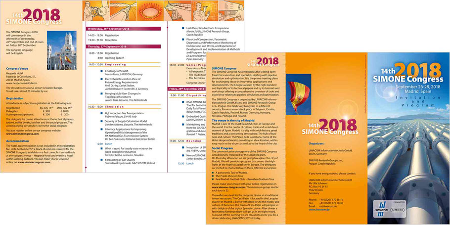 Programmflyer SIMONE Congress 2018
