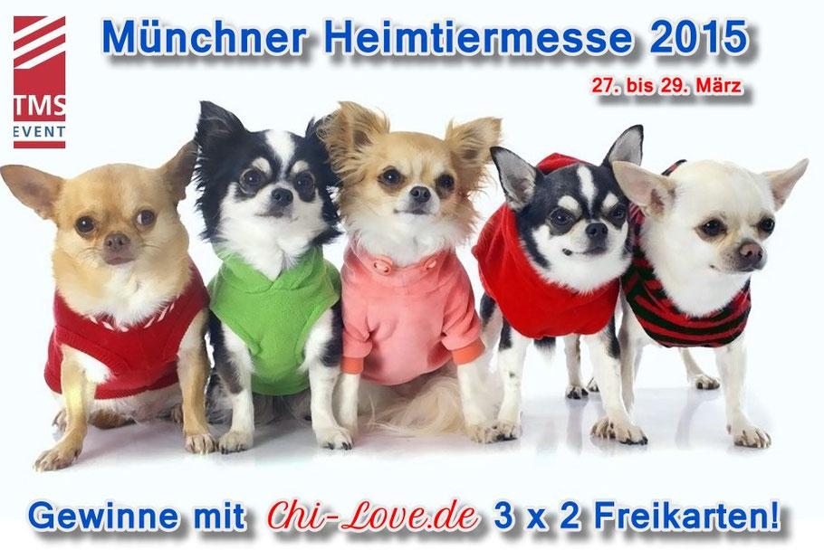 Chi-Love.de | BLOG | Magazin  | Chihuahua | Gewinne 3 x 2 Freikarten zur Münchner Heimtiermesse
