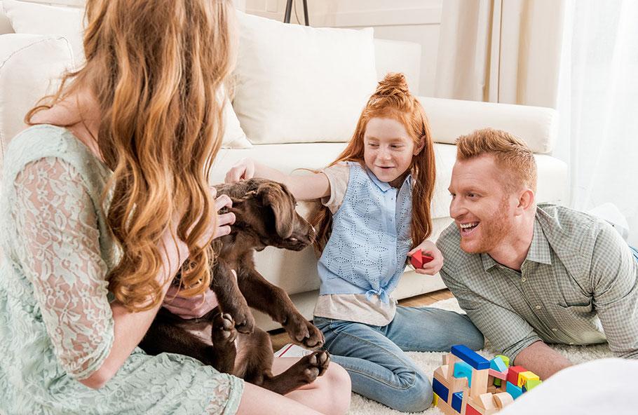 Vater und Mutter spielen mit Ihrem Kind und ihrem Hund