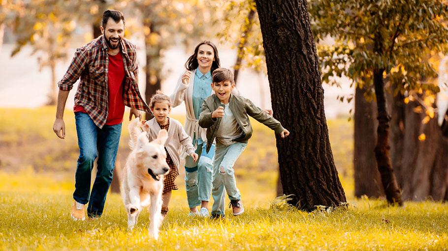 Familie mit Hund rennt fröhlich über eine Wiese