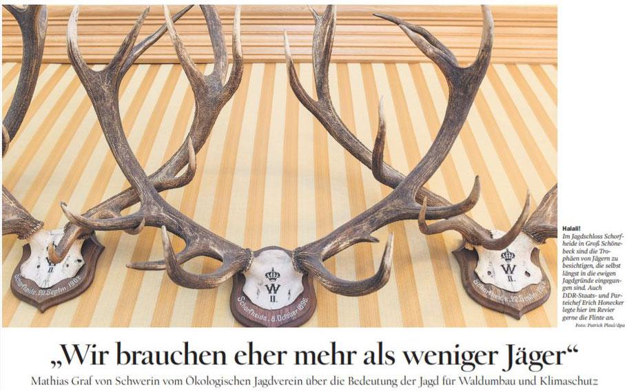 Quelle: Tagesspiegel/Brandenburg (Foto: Patrick Pleul/dpa)