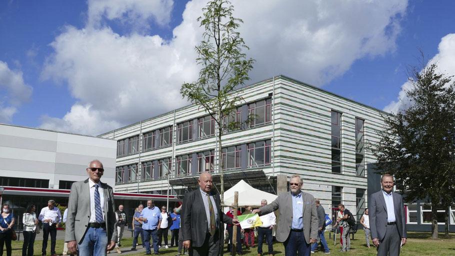 Zeremonie mit Abstand: Uwe Heyn und Hans-Dieter Schiller von den Gartenfreunden übergaben formal den Zukunftsbaum an die Stadtvertreter Henning Meyn und Bernd Weiher (v.l.)