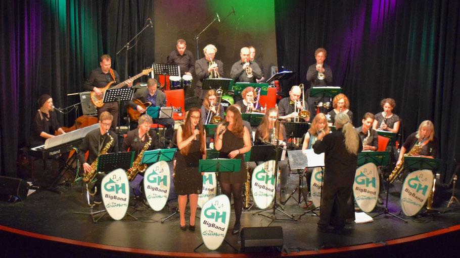 Professionelles Niveau: die Greenhorns präsentierten am 29.5. ihr neues Programm.