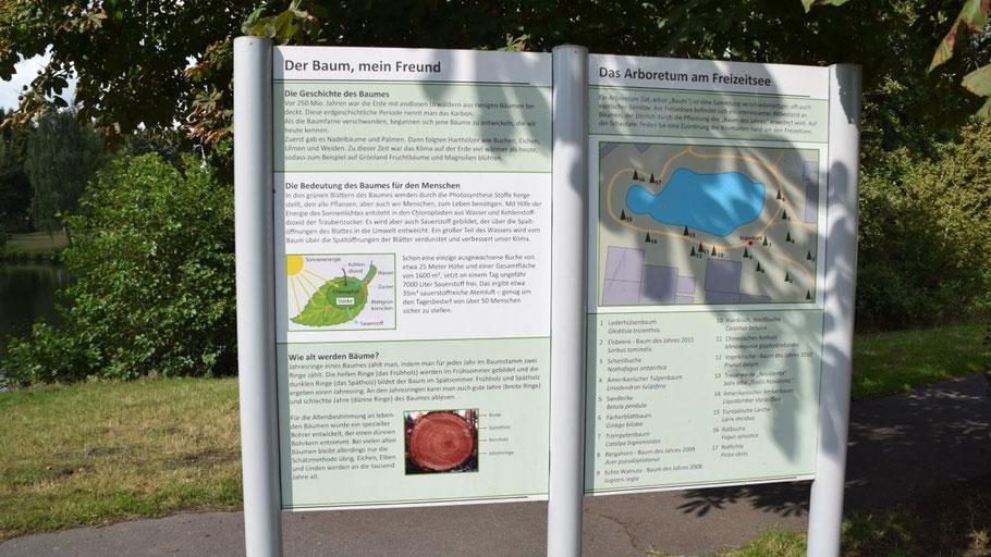 Diese Tafel informiert über den Baum-Lehrpfad, der dank der Quickborner Rotarier erweitert wird.