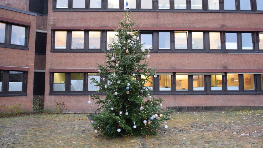 Wie der Weihnachtsbaum auf dem Rathausmarkt entsorgt wird, ist nicht bekannt, private Tannenbäume können an festgelegten Stellen in der Stadt abgegeben werden.
