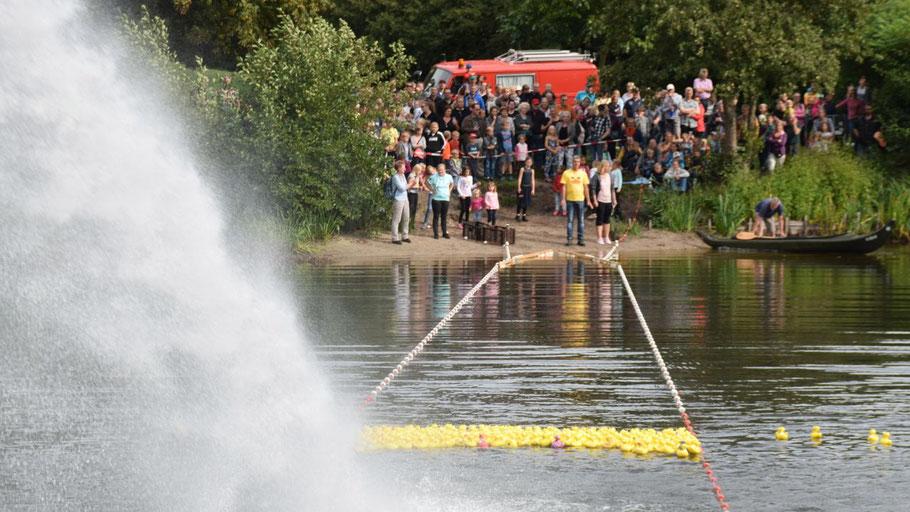 Mit einem großen Wasserstrahl trieb die Feuerwehr die Enten über den Freizeitsee an das andere Ufer