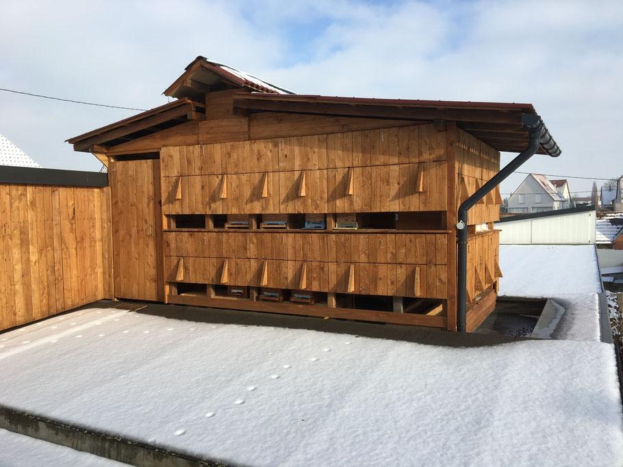 Rucher d'hivernage couvert, sous quelques centimètres de neige.