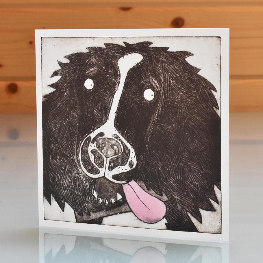 springer spaniel dog blank inside greeting card