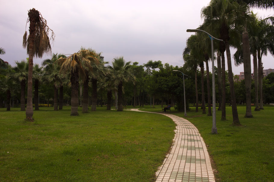 Daan Forest Park, Taipei.