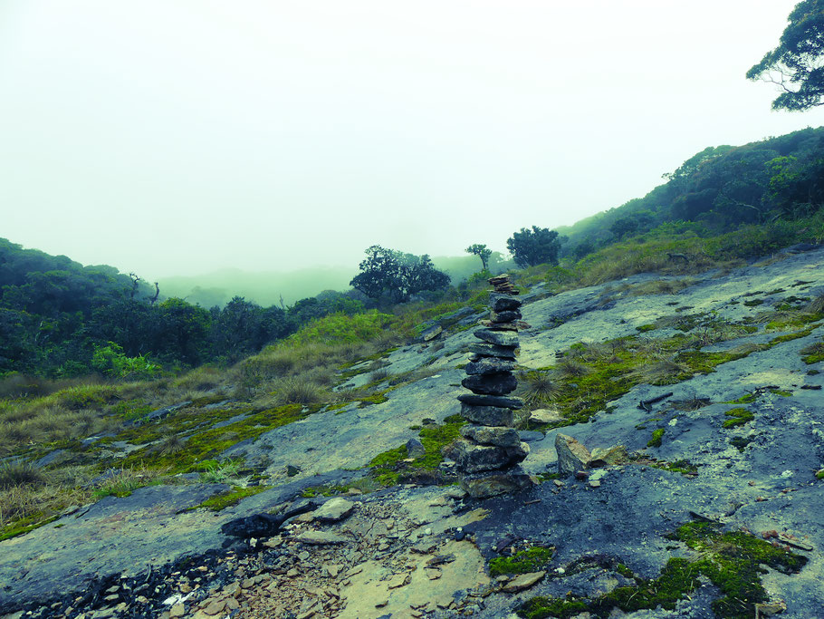 Léopard Rock.