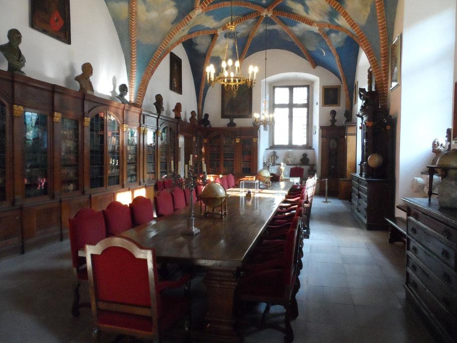 Collegium Novum, Cracovie.