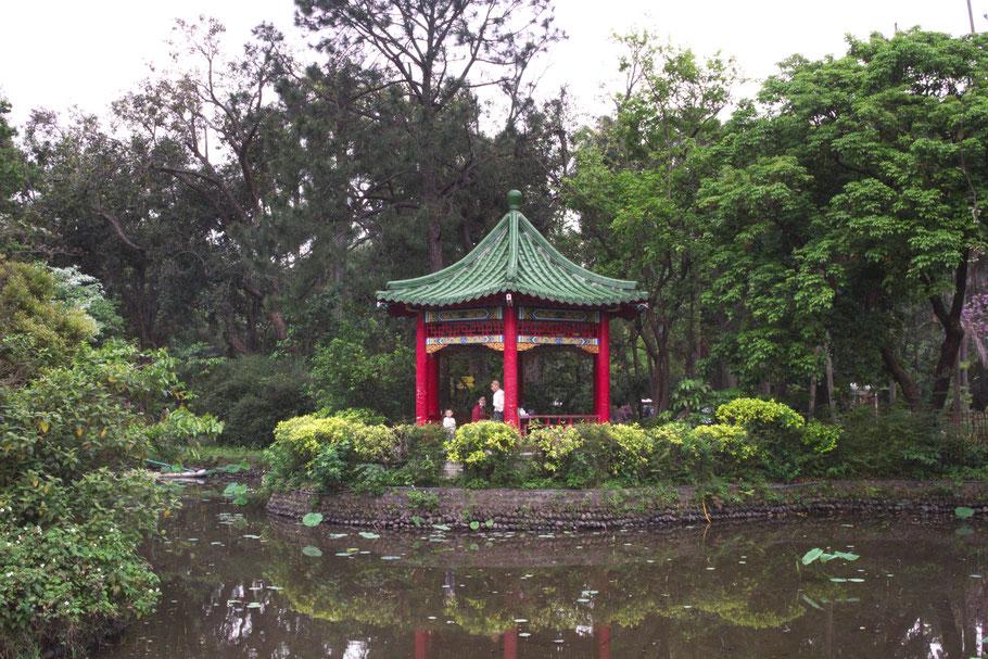 Taipei Botanical Garden.