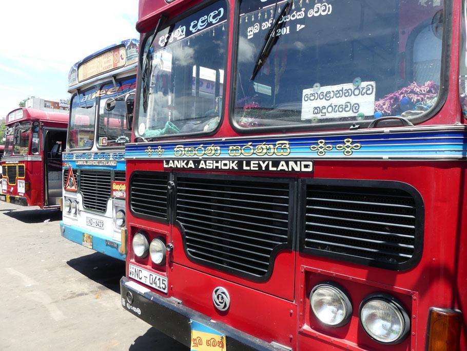 Les fameux bus Tata, le rêve des voyageurs à petit budget.