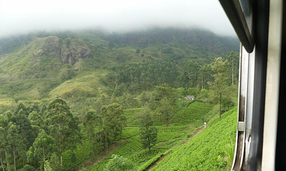 extraordinaire trajet en train en Kandy et Ella