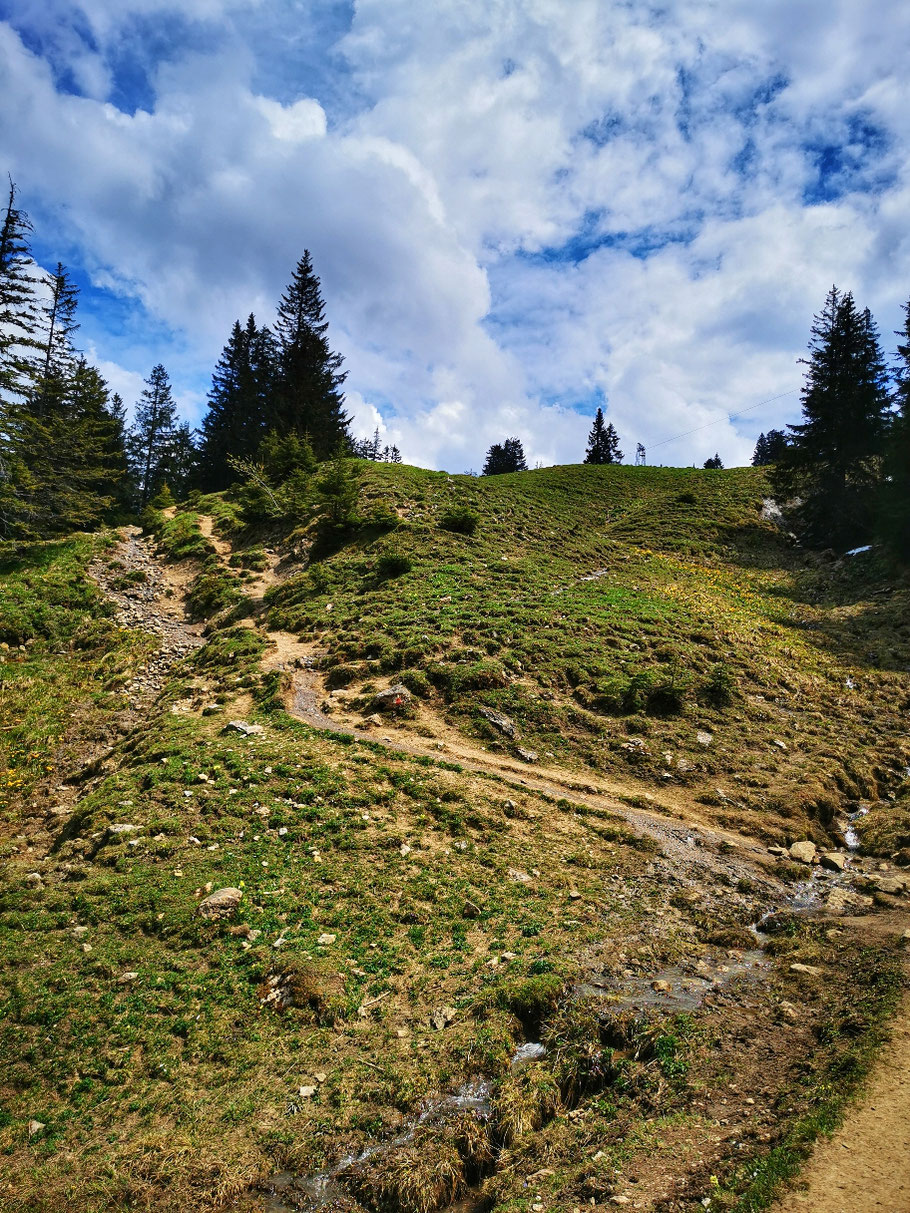 Abzweig zur Grüntenhütte und Gipfel