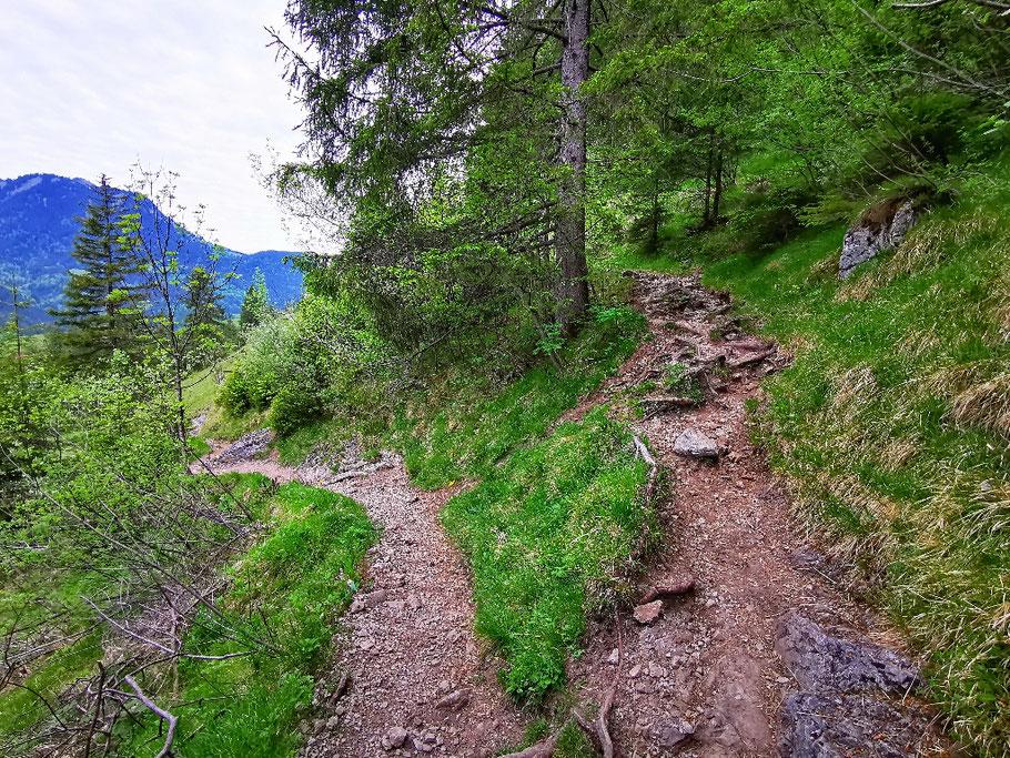 In teilweise steilen Kehren geht's es zügig bergauf