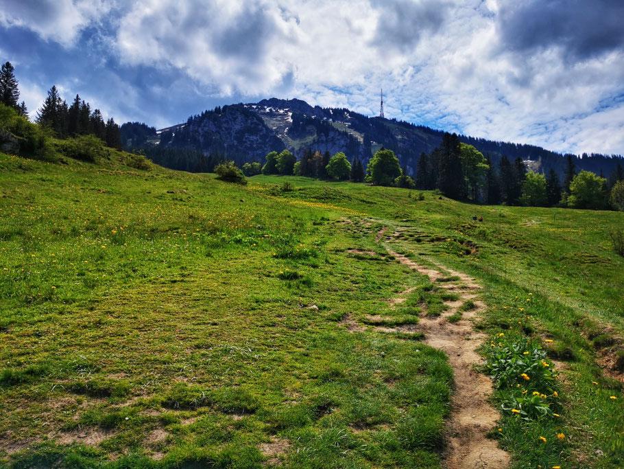 Gemütlicher Aufstieg Richtung Gipfel
