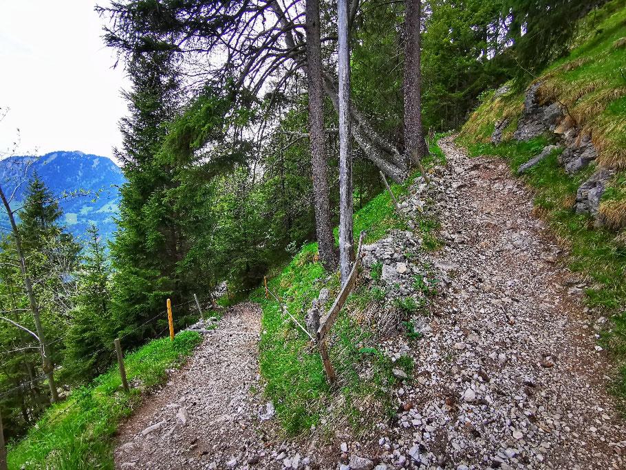 ... teilweise in steilen Kehren weit hinauf...