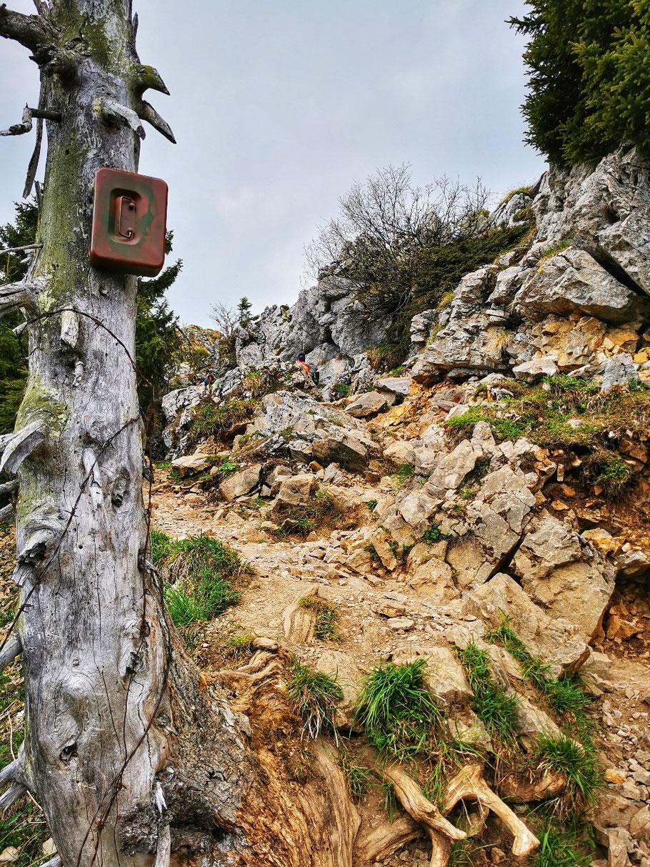 Felsigeres Gelände auf dem Gipfelgrat