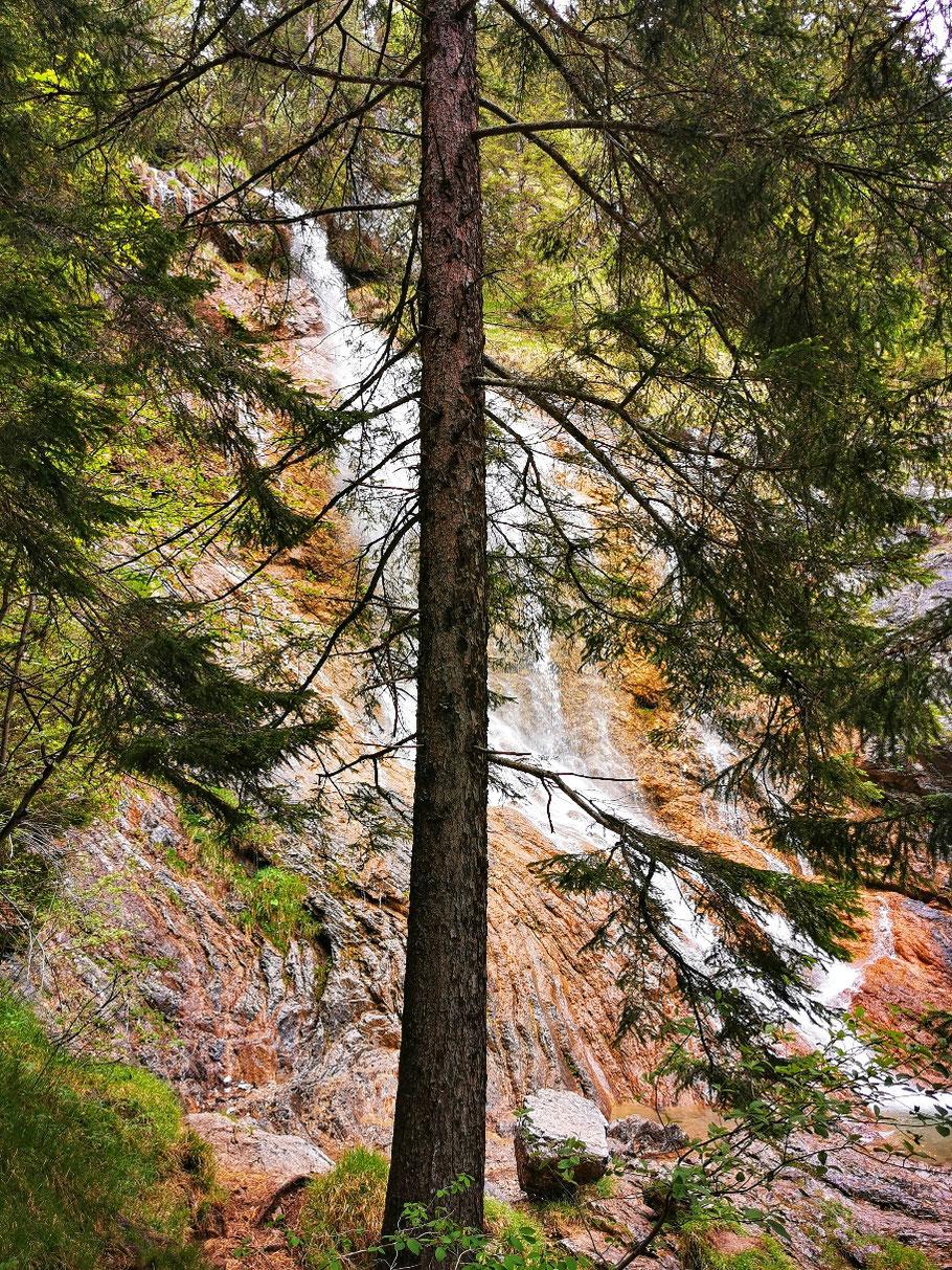 Ein Wasserfall kommt in Sicht