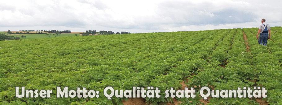 Unser Motto: Qualität statt Quantität