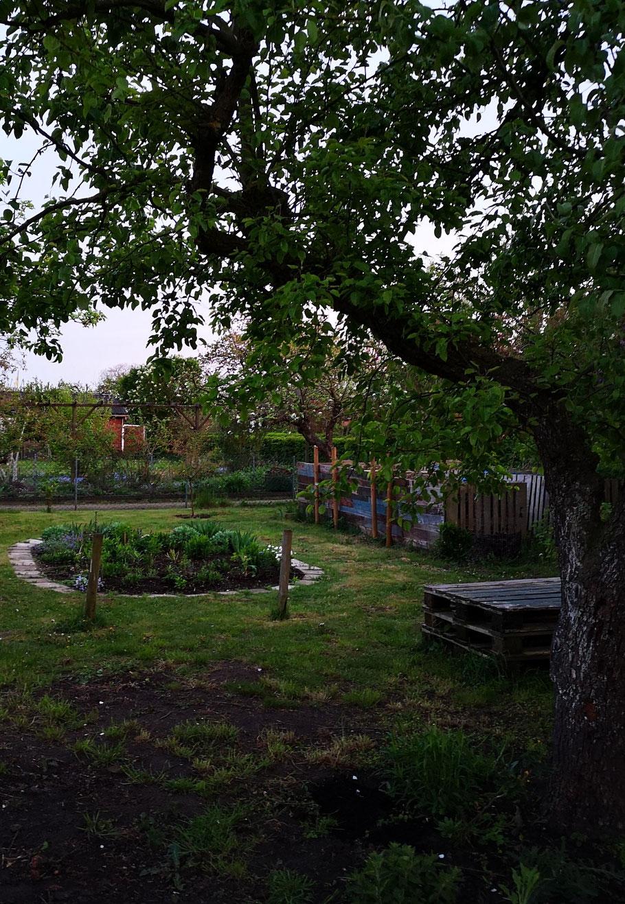 Schmetterlingsgarten bei Dämmerung