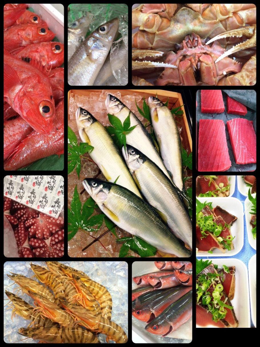 夏休みの自由研究・仕事体験なら岐阜市 食べる水族館 魚屋 魚ぎ