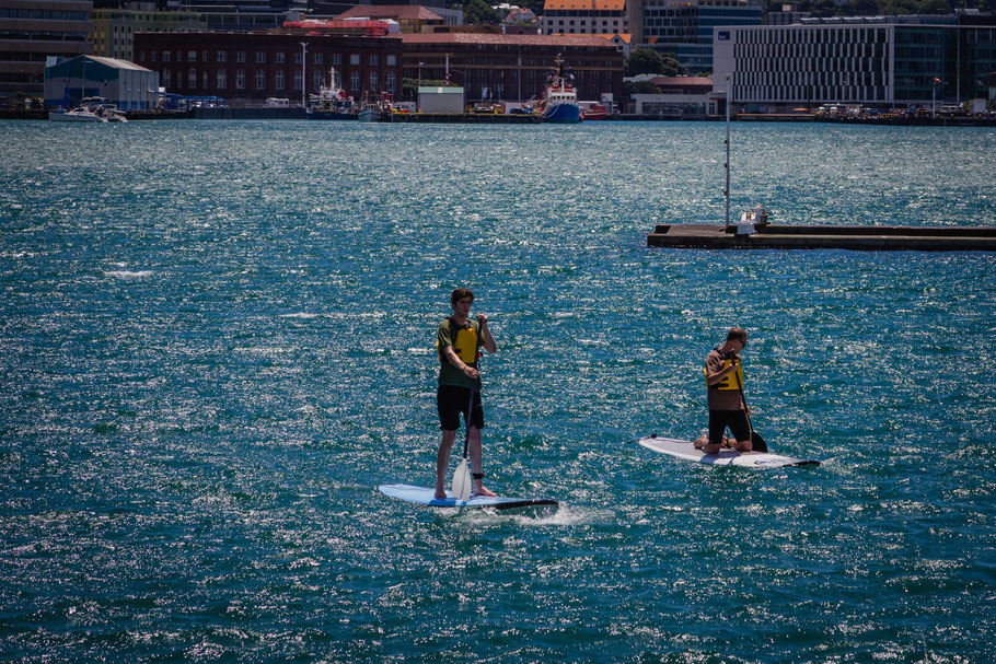 Wellington New Zealand - Paddleboarding