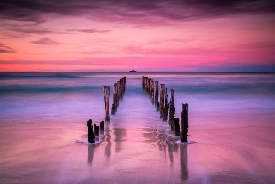[Image: saint-claire-beach-dunedin-new-zealand.jpg]