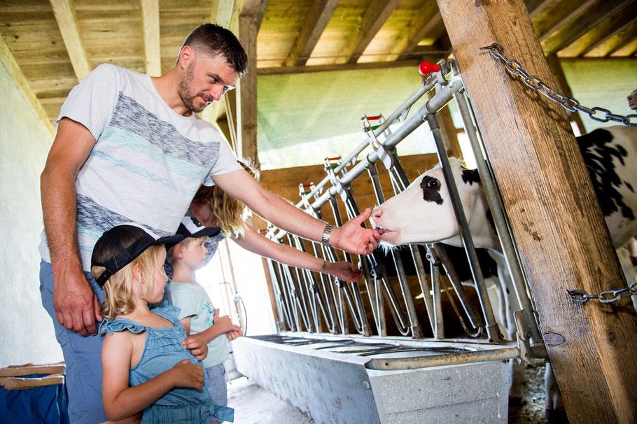 Unser Alltag auf dem Landwirtschaftsbetrieb - Jordi-Hof Bewirtung und Übernachtung auf dem Bauernhof in Ochlenberg