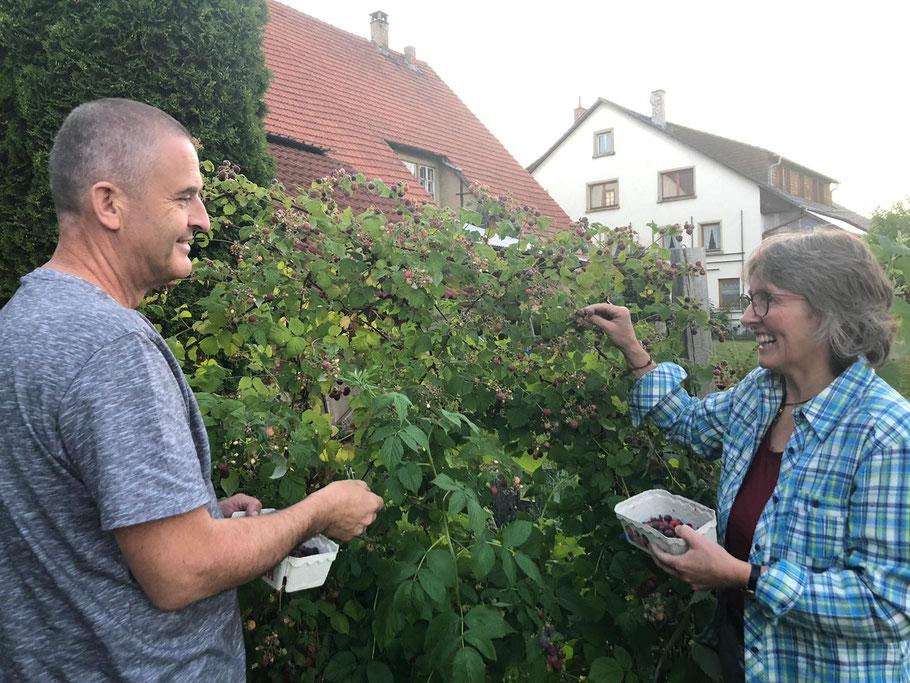 Hubert und Claudia Ketterer bei der Ernte