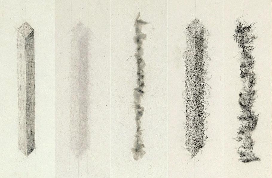[ Language Memory ]  Detalle de las imágenes producidas por el proceso de dibujar, destruir y redibujar.