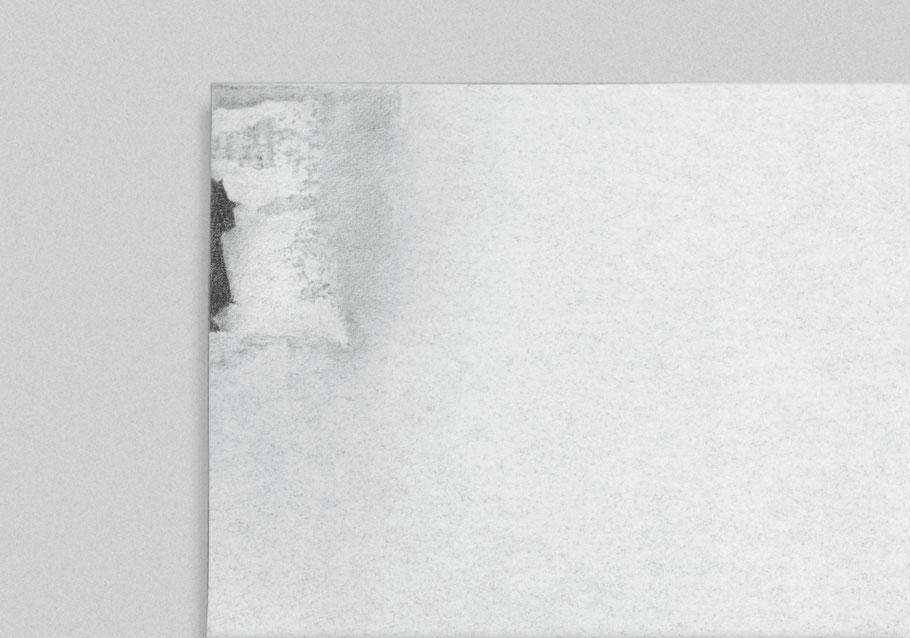 [ Cometa y reproducción ] Grafito sobre papel (detalle)