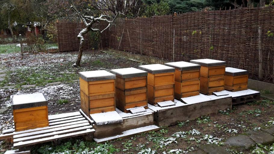 Erster Schnee auf des Gartenimkers Bienenstöcken