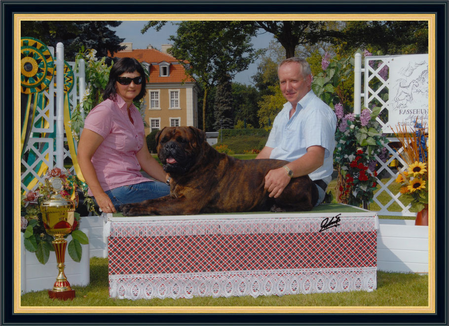 Bullmastiff del paése - Andreas Kirschstein mit einem seiner Zucht Champions