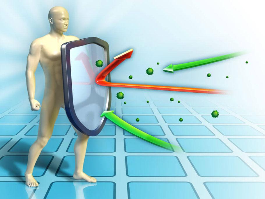 Bild: Ein starkes Immunsystem schützt uns vor Viren, Bakterien, Pilzen und vielem mehr...