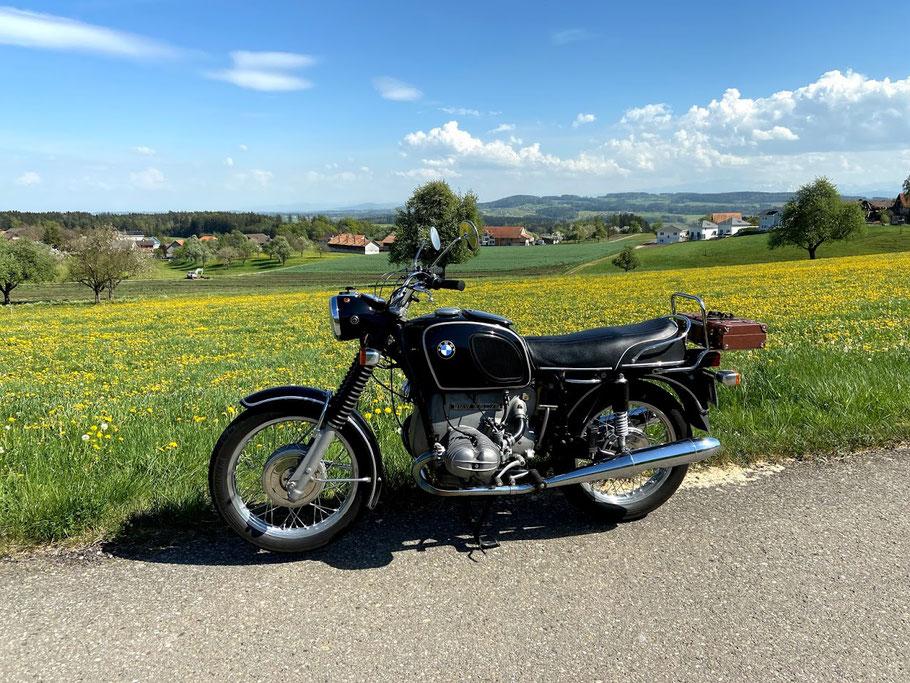 Bluescht im Thurgau